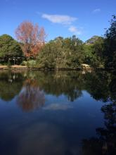 The Cooks River